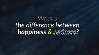Happiness and Sadness